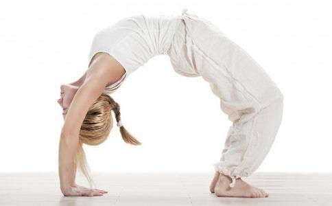 美国兴起山羊瑜伽 瑜伽的好处是什么 瑜伽有哪些好处
