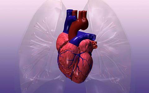 女性更年心是什么 更年心有哪些症状特点 更年心与冠心病有哪些区别