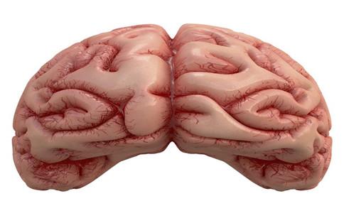 脑水肿的症状 脑水肿的原因 脑水肿怎么引起