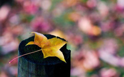 为什么一入秋就失眠 秋季睡眠有哪些禁忌 入秋后失眠怎么办