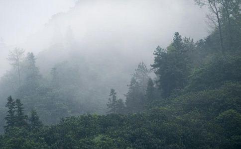 京津冀将遭遇雾霾天 京津冀雾霾 如何减少雾霾伤害