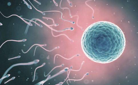 女人喝碱水生儿子靠谱吗 孩子的性别由谁决定 生男生女有秘诀吗