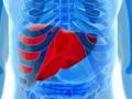 了解7个症状可判断是否患上肝癌