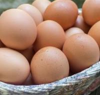 孩子吃鸡蛋虽好 但别和它一起吃