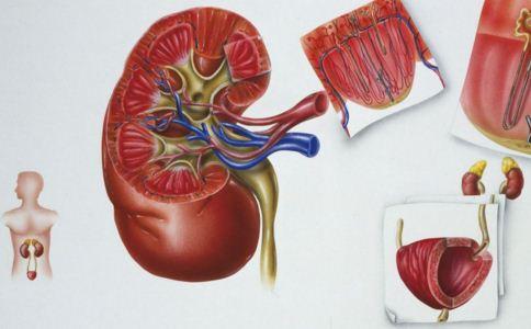 肾衰竭有哪些危害表现 肾衰竭怎么预防 肾衰竭有哪些症状