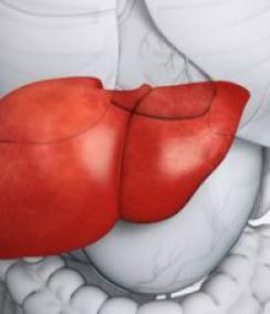 肝癌的症状 怎么判断是否患上肝癌 如何知道是肝癌