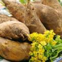 冬季吃什么食物能养生 冬季饮食养生原则 冬季饮食养生方法