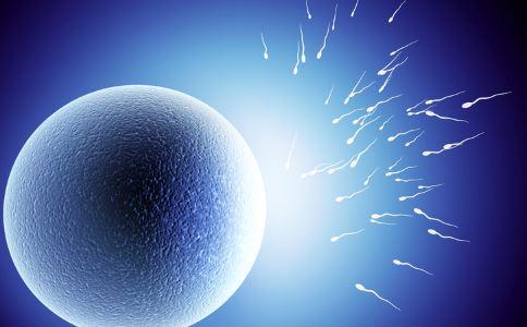 大黑豆还是小黑豆促卵泡发育_卵泡为什么发育缓慢 卵泡发育缓慢怎么调理_不孕不育_妇科_99健康网
