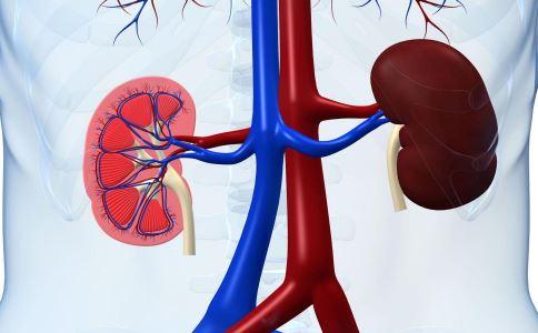 引起肾癌的原因是什么 肾癌要如何诊断 肾癌中晚期能活多久
