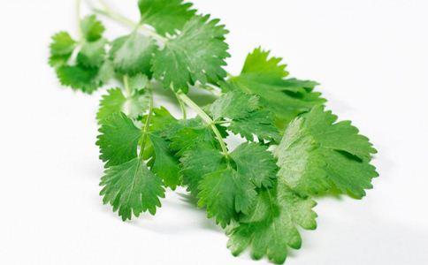 香菜的营养价值 香菜的功效与作用 香菜煮水的好处
