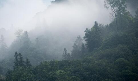 印度推出除霾炮 雾霾天如何保护自己 如何避免雾霾伤害