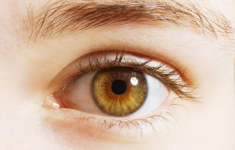 设计师眼中风 如何缓解眼疲劳 缓解眼疲劳的方法