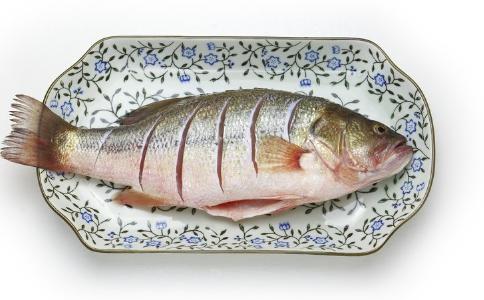 真的 这是 鱼类 脂肪 鱼眼 含量 营养 如果 影响 可能 这些 饱和