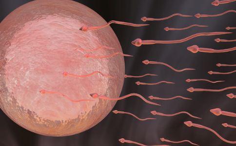 男人精子畸形怎么回事 男人为什么会有畸形精子 男人精子畸形怎么办