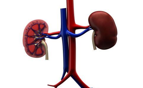 高血压性肾病有哪些症状 高血压性肾病如何检查 高血压性肾病怎样治疗