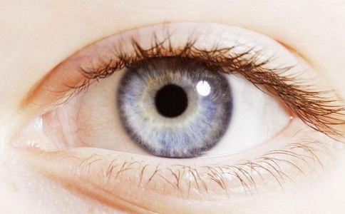 哪些食物能护眼 护眼的食物有哪些 什么食物能护眼
