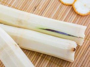 误食发霉甘蔗中毒怎么办