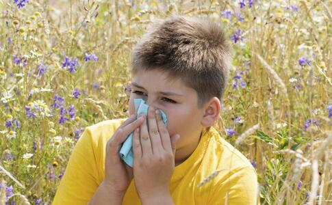 导致过敏的原因 什么原因导致过敏 过敏的原因有哪些