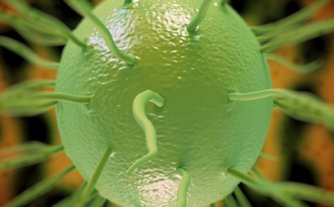 梅毒的传播途径有哪些 梅毒要怎么检查 生活中怎样预防梅毒