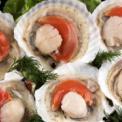 怀孕可以吃鳖吗 怀孕吃海鲜注意什么 孕妇可以吃海鲜吗