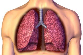 全国爱肝日 肝病的早期症状 如何保护肝脏
