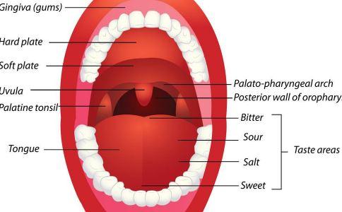 悬雍垂过长症是什么病 悬雍垂过长症是怎么引起的 悬雍垂过长症怎么办