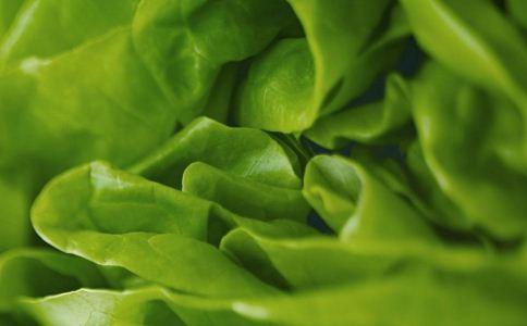 养肝吃什么水果好 养肝的食物有哪些 养肝吃什么好