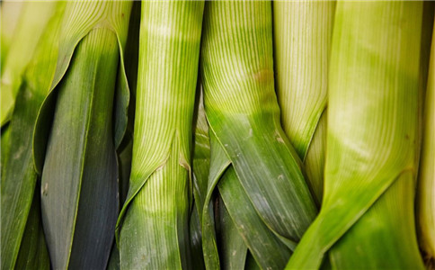 春季吃什么食物 什么食物能防病 春季饮食安排