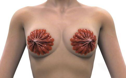 女性体检 女性乳腺健康 女性乳腺