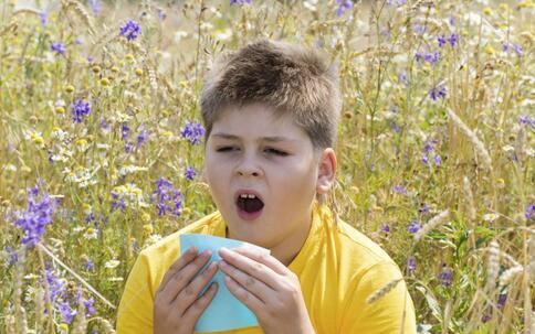 春季如何预防过敏 春季预防过敏的方法 怎么预防过敏