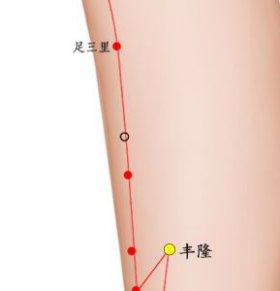 血脂高怎么办 如何降血脂 按摩什么穴位降血脂