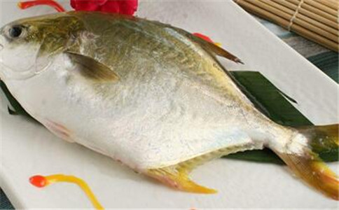 怎么挑选新鲜的鱼 挑鱼的技巧 新鲜鱼的特征
