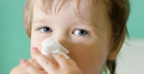 吃什么增强孩子抵抗力 如何增强宝宝抵抗力 孩子吃什么增强免疫力