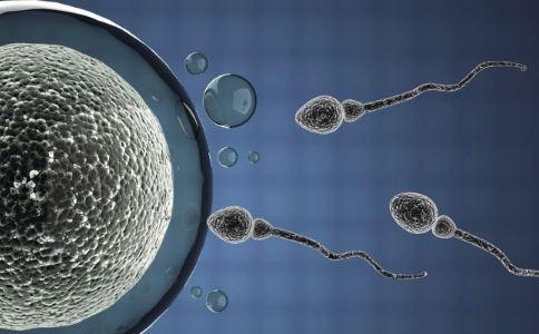 如何检查精子健康 检查精子健康有什么方法 吃什么对精子好