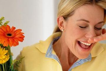 医院花粉过敏患者增多 春天少去沾花惹草