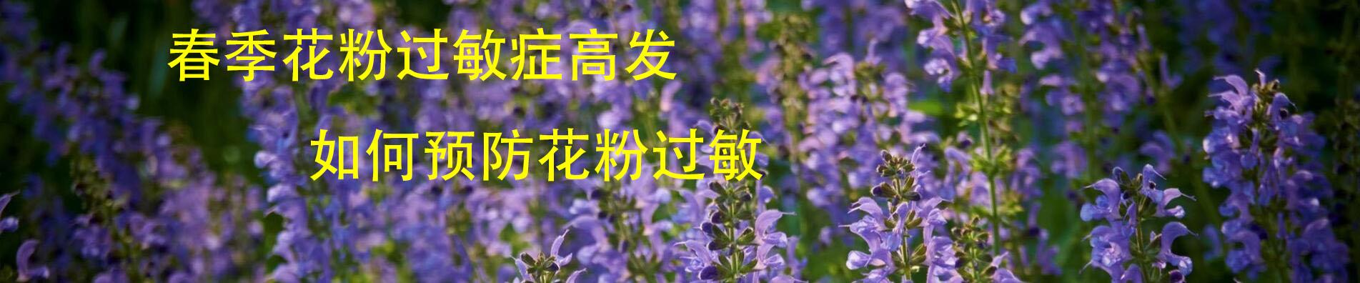 春季花粉过敏症高发 预防小妙招学回家