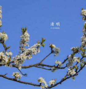 清明节传统习俗 清明节有什么禁忌 清明节有哪些习俗