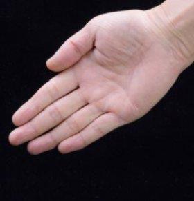 手指怎么养生保健 手指对应的器官 指尖疼痛怎么回事