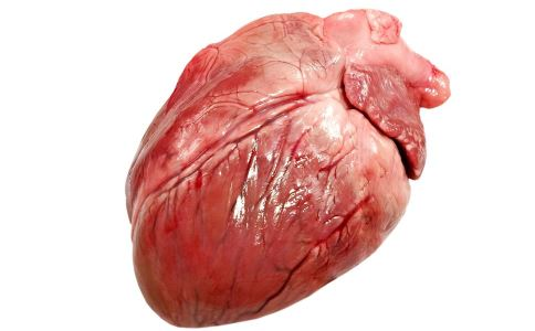 高胆固醇有什么危害 胆固醇高的食物有哪些 哪些食物含有高胆固醇