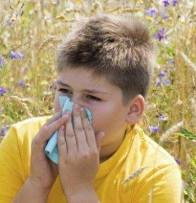 儿童过敏性鼻炎反复发作怎么办 儿童过敏性鼻炎的原因 如何预防过敏性鼻炎