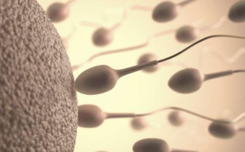 精子活力差怎么办 精子活力差如何治疗 吃什么提高精子活力
