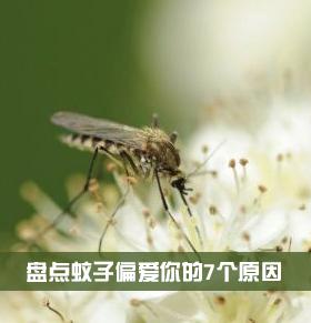 为什么蚊子只咬你 夏季如何驱蚊0 为什么蚊子只咬一个人