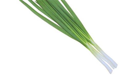 苦菊跟什么相克 苦菊的营养价值 怎么做苦菊