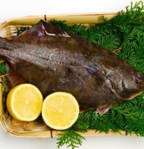 夏天吃什么鱼好 夏天吃鱼的好处 夏天适合吃什么鱼肉