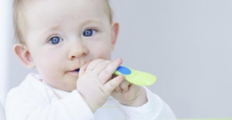 宝宝辅食能吃山药吗 宝宝吃山药的好处 宝宝吃山药注意事项