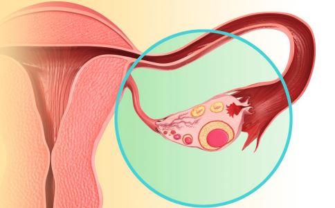 输卵管出现问题会有哪些征兆 输卵管要做哪些检查 腹痛是输卵管的症状吗