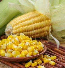 玉米须煮水的功效 玉米须煮水有什么好处吗 玉米须煮水