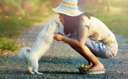媒体评狗咬人频发 狗咬伤如何处理 狗咬伤的处理方法