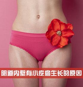 阴道内壁有小疙瘩生长的原因是什么