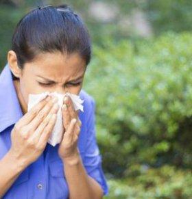 中医治疗鼻炎的方法 中医怎么治疗鼻炎 治疗鼻炎的偏方